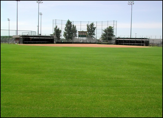 aaglawnman,LAWN CARE, natural sports turf,sports field